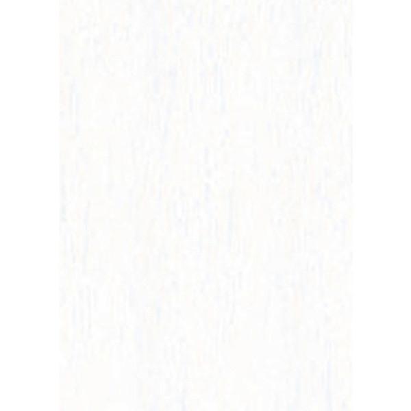 Afbeelding van crepepapier Folia 250x50cm nr 100 wit