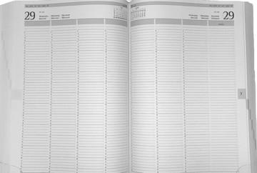 Picture of agenda Castelli 2020 H64 Praktijk 210x297mm 1/2 Mundior 7 kolommen - zwart
